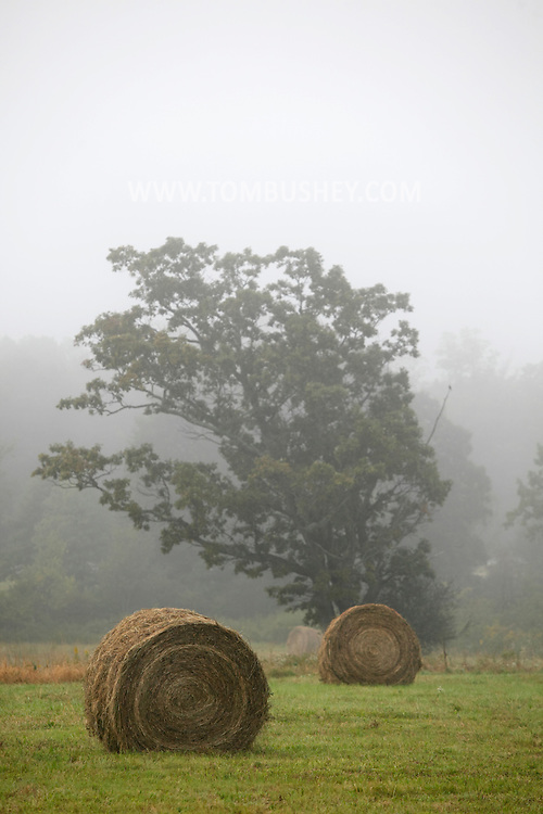 Middletown, NY - Hay bales in a farm field are visible in the Early morning mist on Oct. 2, 2009.
