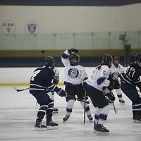Women's Ice Hockey: Bethel University (Minnesota) Royals vs. Chatham University Cougars