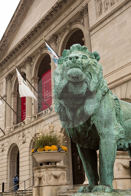 Art Institute of Chicago western entrance on Michigan Avenue guarded by two bronze lion statues created by sculpture Edward Kemeys.