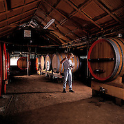 Vigneron testying wine near wooden vats, Hunter Valley, Ausdtralia