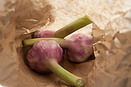 Fresh garlic in a paper bag.