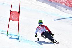 SIKORSKI Igor LW11 POL competing in ParaSkiAlpin, Para Alpine Skiing, Super G at PyeongChang2018 Winter Paralympic Games, South Korea.
