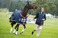 William Fox-Pitt (GBR) & Bay My Hero - First Horse Inspection - Longines FEI European Eventing Championships - Blair Castle, Scotland - 09 September 2015