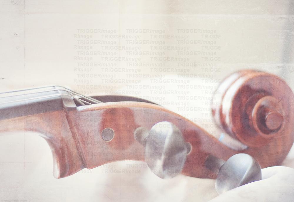 close up of the neck of a cello, cello scroll