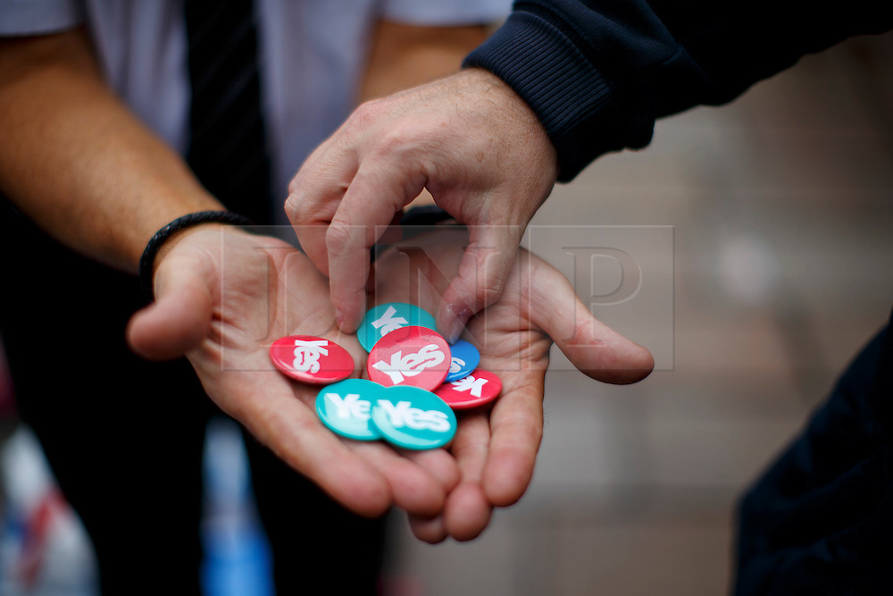 © Licensed to London News Pictures. 18/09/2014. Glasgow, UK. 'Yes' campaigners handing out badges in Glasgow city centre whilst people of Scotland going to polling stations to vote on the Scottish independence referendum on Thursday, 18 September 2014. Photo credit : Tolga Akmen/LNP