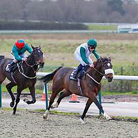 The Blue Dog and Joe Doyle winning the 2.20 race