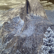 Yosemite National Park's most well-know feature is Half Dome, which stands at an altitude of 8,836 feet and 4,737 feet above the valley floor. As the rock was exposed, weathering and exfoliation of shell-like outer layers of the rock shaped the dome portion of the rock to its current shape. The summit is attainable as a day hike in the summer, if you have the stamina to undertake a 17-mile roundtrip hike with 5000 feet of elevation gain from the valley floor...This is an infrared image which captures light that we cannot see and turns it into a visible image. Plants like flowers and grass reflect more infrared light and appear brighter in infrared images while the sky reflects less making it darker.