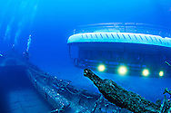 Atlantis Submarine off Starboard, Carthaginian II, Maui Hawaii