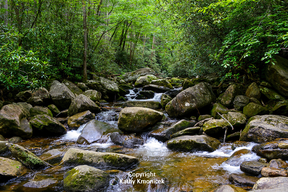 One of several streams at South Mountains State Park in Connelly Springs, North Carolina on June 20, 2017.<br /> <br /> &copy; Photography by Kathy Kmonicek