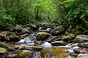 One of several streams at South Mountains State Park in Connelly Springs, North Carolina on June 20, 2017.<br />