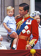 Prince George Wears William's Outfit_1st Trooping