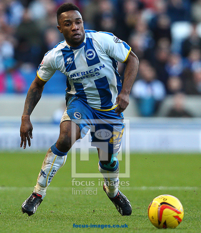 Picture by Paul Terry/Focus Images Ltd +44 7545 642257<br /> 11/01/2014<br /> Kazenga LuaLua of Brighton and Hove Albion during the Sky Bet Championship match at the American Express Community Stadium, Brighton and Hove.