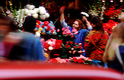 A vendor on the Vaci Utca in Budapest, arranges her display of fresh cut flowers.