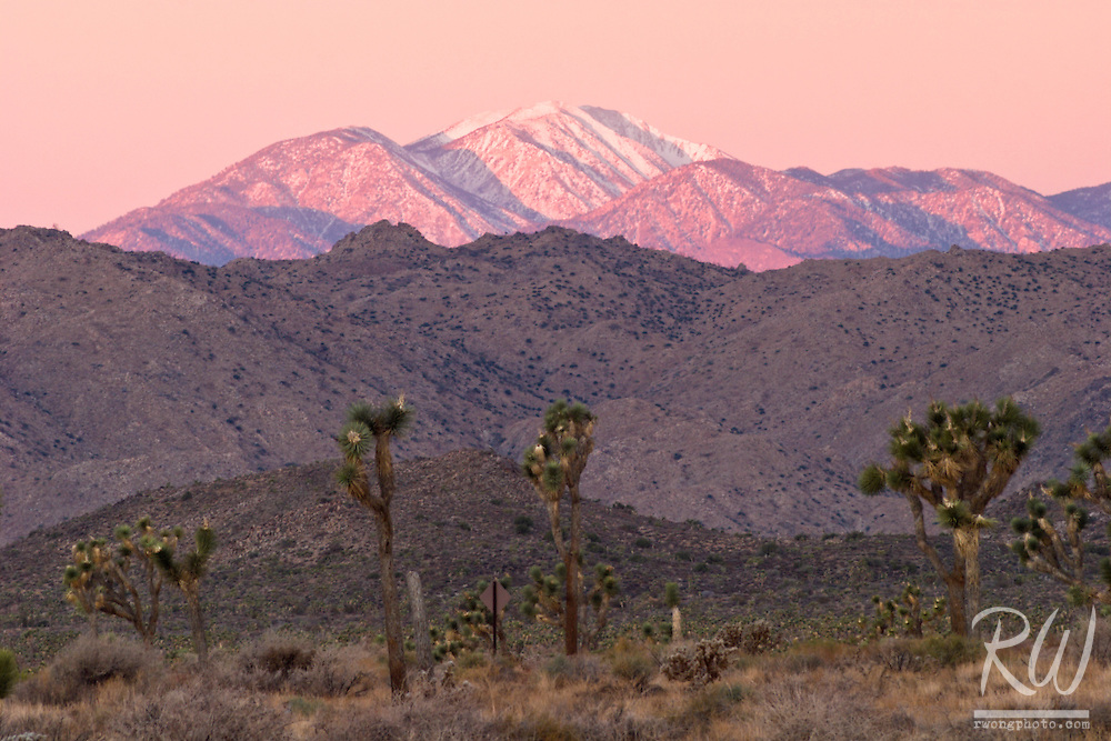 Winter Sunrise View of Mount San Gorgonio, Joshua Tree National Park, California