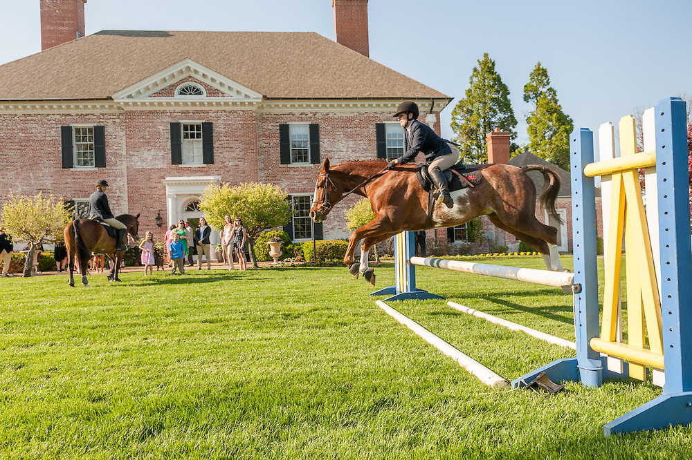 Woman riding a horse jumping a hurdle in Baltimore County, MD USA