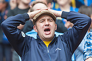 An AFC Wimbledon fan during the Sky Bet League 2 Play-off Final at Wembley Stadium, London<br /> Picture by Matt Wilkinson/Focus Images Ltd 07814 960751<br /> 30/05/2016