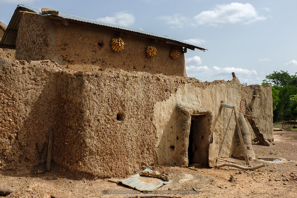The exterior of a homestead in the village of Kangpuo in the Upper West region of Ghana. Sheaves of corn hanging from the eaves are being stored as seed crop for the next planting season.