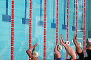 Belo Horizonte_MG, Brasil...Nadadores na eliminatoria mundial de natacao 2006. ..Swimmers in the World Swimming 2006...Foto: LEO DRUMOND / NITRO