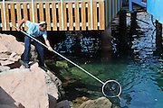 Israel, Eilat Man cleaning the Marina