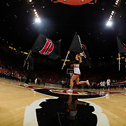 09 December 2017:  The San Diego State men's basketball team hosts the California Golden Bears Saturday afternoon. The Aztec cheer squad leads the team onto the court prior to taking on Cal. The Aztecs trail 39-34 at halftime.<br /> www.sdsuaztecphotos.com