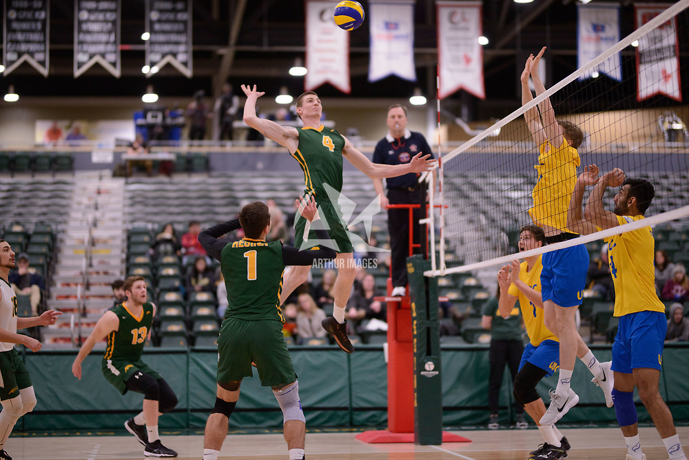 3rd year middle blocker Cody Caldwell (4) of the Regina Cougars in action during Men's Volleyball home game on February 2 at Centre for Kinesiology, Health and Sport. Credit: Arthur Ward/Arthur Images