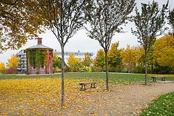 View of Wasserturm Park  during Autumn  in Prenzlauer Berg , Berlin, Germany
