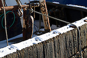 Snow on the Gunwale of a Ballard Work Boat in this photograph by Michael Kleven
