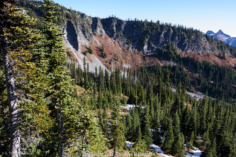 Lava ridges ran down from the volano's summit like so many fences. Subalbine firs and huckleberry meadows covered open areas.