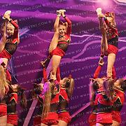 5166_Crimson Heat Tigers  - Crimson Heat Tigers  Medium Junior Level 1