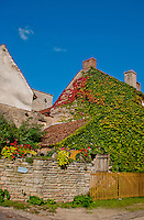 Creeper covered stone buildings in a village outside Chateauneuf-en-Auxois, France.