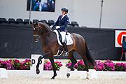 Emmelie Scholtens - Hero<br /> WK Selectie Jonge Dressuurpaarden 2017<br /> © DigiShots