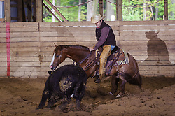 May 21, 2017 - Minshall Farm Cutting 4, held at Minshall Farms, Hillsburgh Ontario. The event was put on by the Ontario Cutting Horse Association. Riding in the Open Class is Eric Van Boekel on Mister Boss Hog owned by the rider.