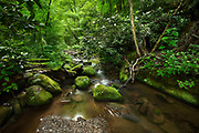 Greenbrier, Great Smoky Mountains, Tennessee.<br />