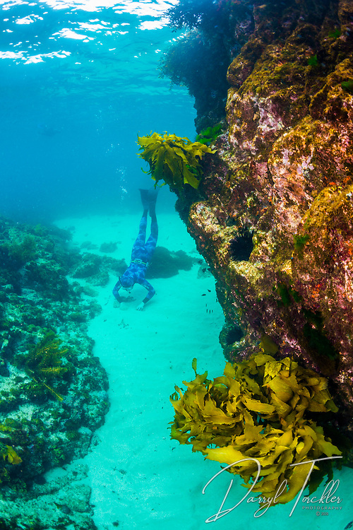 Snorkelling and exploring around Arid Island.