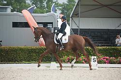 Ehnberg Fogelberg Maj-Christina, SWE, Zappa SV<br /> World Championship Young Dressage Horses <br /> Ermelo 2016<br /> © Hippo Foto - Leanjo De Koster<br /> 29/07/16