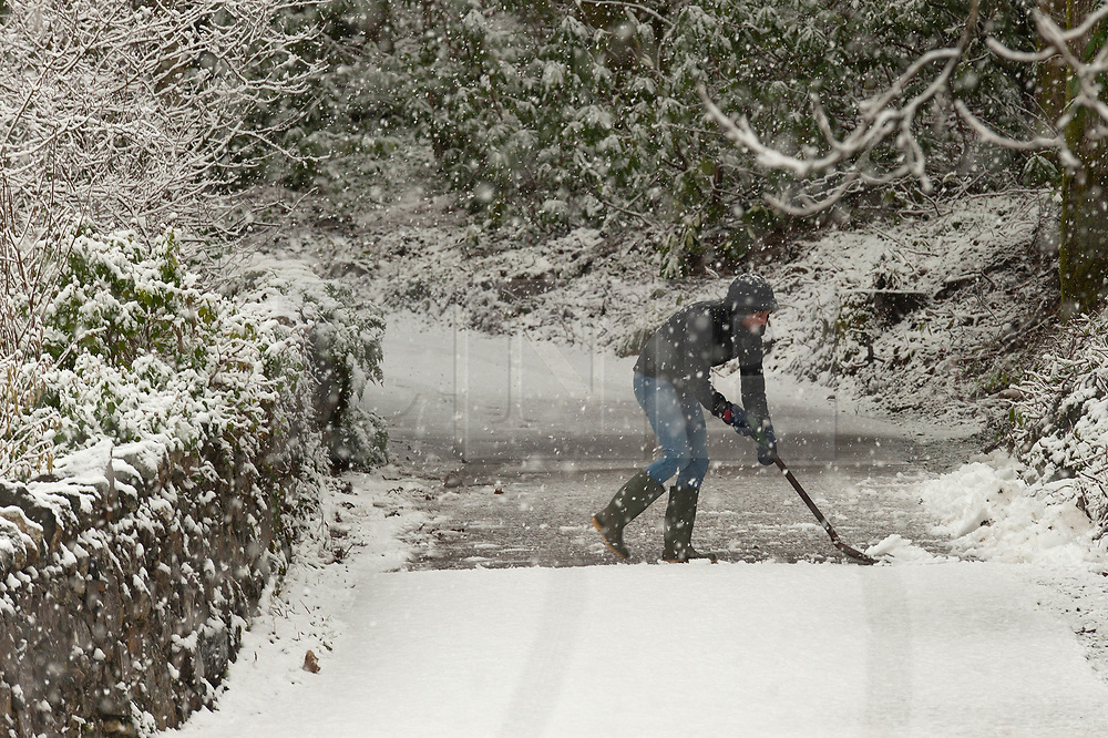 © Licensed to London News Pictures. 29/01/2019. Snowdonia, Conwy, Wales, UK. Peopee clear their drive as heavy snow falls on the A5 road between Capel Curig and Betws-y-Coed, Snowdonia National Park, Conwy, Wales, UK. credit: Graham M. Lawrence/LNP