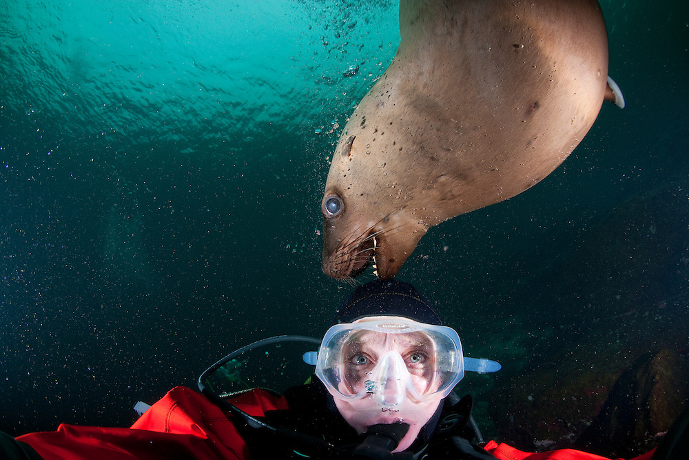 Canada, British Columbia, Hornby Island, Self-portait of photographer Paul Souders scuba diving with Stellers Sea Lion
