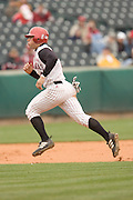 Arkansas Razorback Baseball photography from the 2004-2005 season