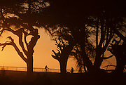 Mountain Biking, Bicycling,  cycling, sunset, California Coast, Pacific Ocean, Ocean, Sunset, California