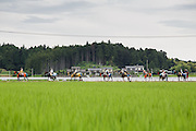 Minami-Soma, Fukushima prefecture, July 25 2015 - Parade between rice-fields of Minami-Soma during Nomaoi, a festival of samurai riding horses.<br /> The Soma nomaoi is said to be a 1000-year-old traditional festival. It was held in 2011, a few months after the nuclear disaster, but only a few local horses were available.
