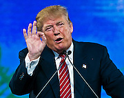 Republican Presidential candidate Donald Trump speaks at the 2015 FreedomFest in Las Vegas, Nevada July 11, 2015. L.E. Baskow