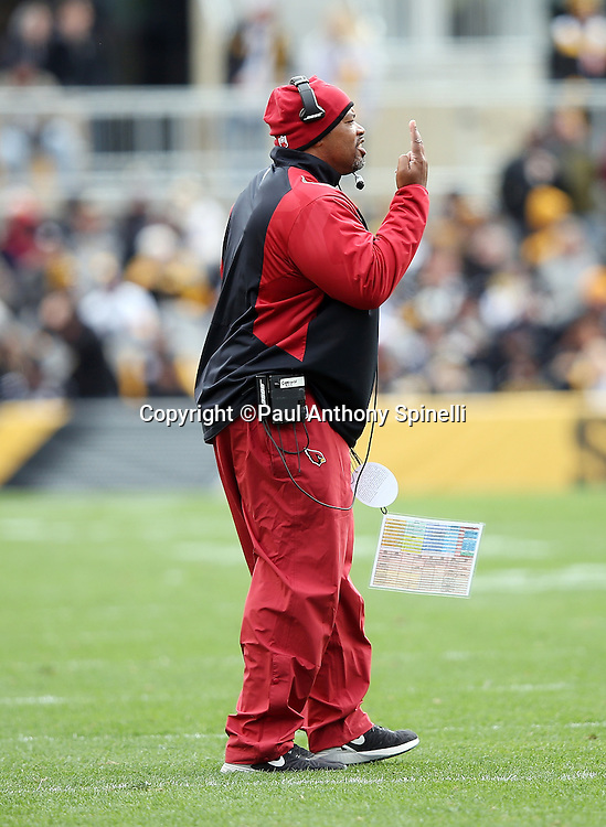 Arizona Cardinals offensive coordinator Harold Goodwin gestures as he calls out from near the sideline during the 2015 NFL week 6 regular season football game against the Pittsburgh Steelers on Sunday, Oct. 18, 2015 in Pittsburgh. The Steelers won the game 25-13. (©Paul Anthony Spinelli)