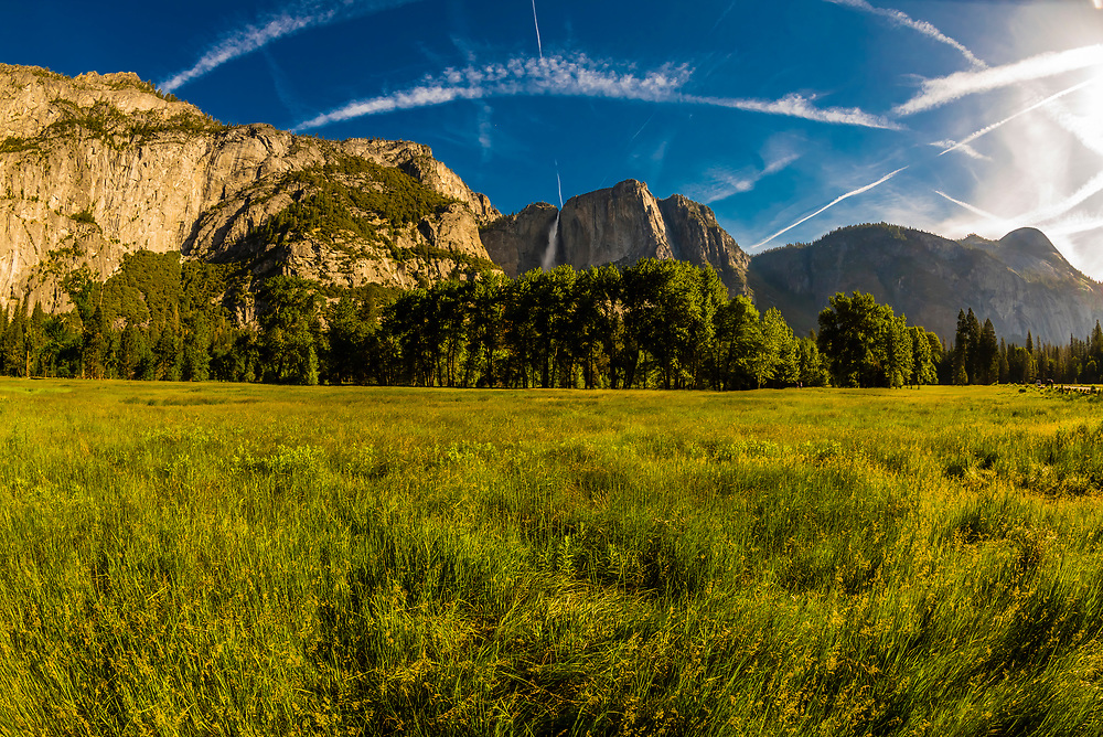 Yosemite Valley (Upper Yosemite Fall in background), Yosemite National Park, California USA.