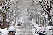 Cars parked in a snow-covered Hampstead street, North London, England, United Kingdom