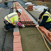 M Street median work. Workers laying bricks. SE, Washington DC.