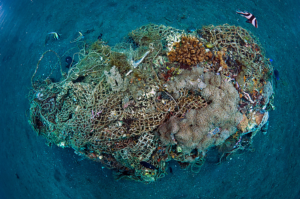 Corals and other marine life slowly recycle and transform man-made garbage and debris into small artificial reefs on the sandy underwater slopes of Lembeh Strait, Indonesia.