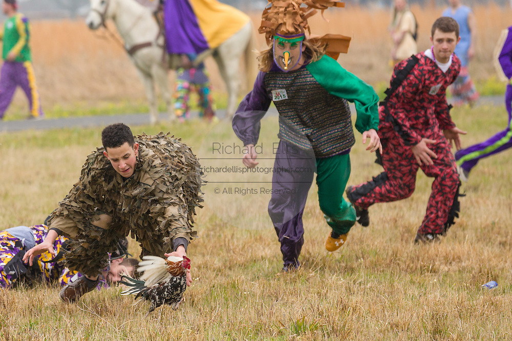 Revelers dive to capture a live chicken during the traditional Cajun Courir de Mardi Gras chicken run February 15, 2015 in Church Point, Louisiana. The event involves 900-hundred costumed revelers competing to catch a live chickens as they move from house to house throughout the rural community.