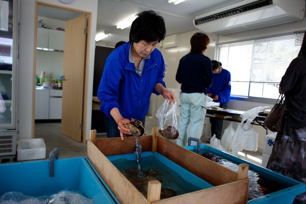 May 28, 2013 - Togura, Japan: A local woman serves costumers at the seafood shop owned by Togura's fishing community. Togura, a small fishing village in Minami Sanriku, was vastly destroyed by the 2011 tsunami that hit the northeast coast of Japan. Thousands died and hundreds of families lost their houses, business and boats. The recovering community works now in a cooperative system where the few remaining boats, spared by the tsunami, are shared by all. (Paulo Nunes dos Santos)