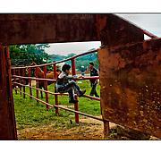 """Autor de la Obra: Aaron Sosa<br /> Título: """"Serie: Feria de Clarines""""<br /> Lugar: Clarines, Estado Anzoátegui - Venezuela <br /> Año de Creación: 2009<br /> Técnica: Captura digital en RAW impresa en papel 100% algodón Ilford Galeríe Prestige Silk 310gsm<br /> Medidas de la fotografía: 33,3 x 22,3 cms<br /> Medidas del soporte: 45 x 35 cms<br /> Observaciones: Cada obra esta debidamente firmada e identificada con """"grafito – material libre de acidez"""" en la parte posterior. Tanto en la fotografía como en el soporte. La fotografía se fijó al cartón con esquineros libres de ácido para así evitar usar algún pegamento contaminante.<br /> <br /> Precio: Consultar<br /> Envios a nivel nacional  e internacional."""