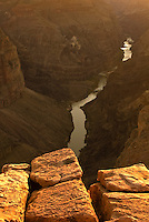The Colorado River flows below the Toroweap viewpoint in Grand Canyon National Park, Arizona.